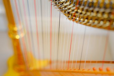 Discover the Harp: results