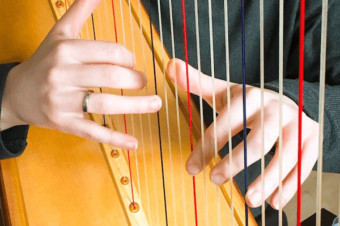 Live no 12 – Avoiding blisters when playing the harp