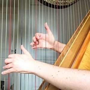 Hands on the harp strings
